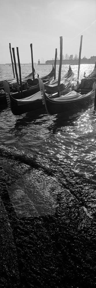 Venice_6x17_007