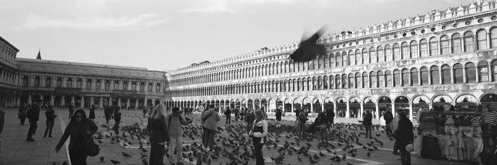 Venice_6x17_014