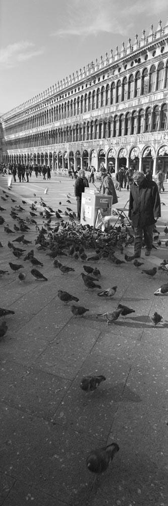 Venice_6x17_015
