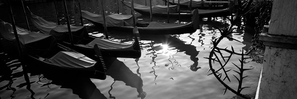 Venice_6x17_025